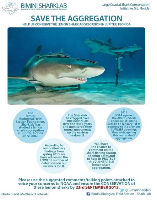 sharklab